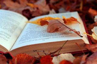libro_bosco