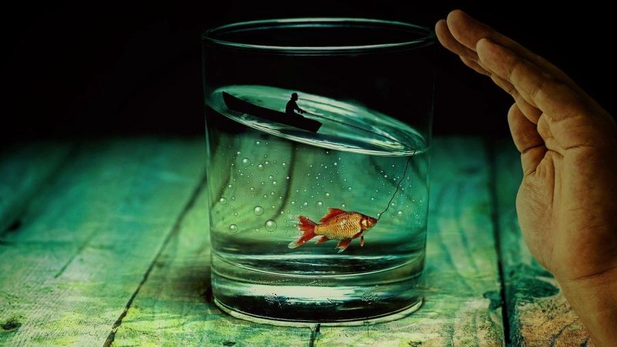 Editori No EAP, duelli e pesci rossi